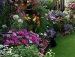 浪漫诱惑——英式庭院