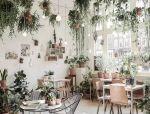把植物吊起来,让空间更美