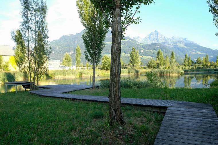 瑞士LowerFactoryPond水系环境修复-15