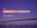 公路桥梁设计小白技能培训(高级工程师讲授)