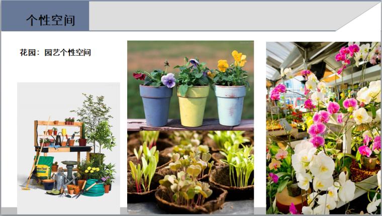 花园洋房样板房风格建议(附图丰富)-花园:园艺个性空间