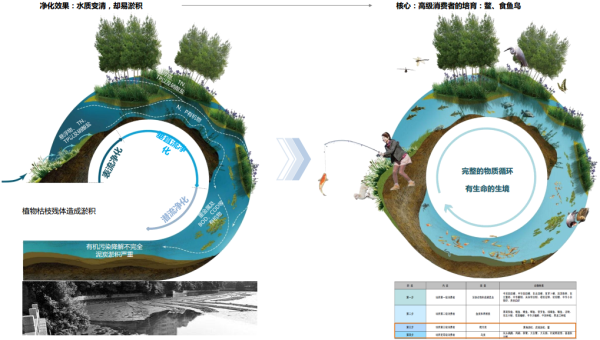[安徽]滨湖生态海绵城市河道景观设计方案(知名公司设计)  目录:项目图片