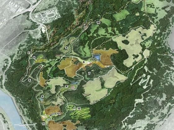 [重庆]绿色养生森林公园总体设计方案