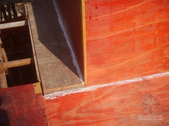 [四川]框剪结构科研楼高大模板支撑施工方案