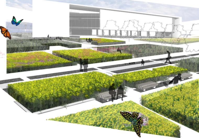 [江苏]杜克大学中国昆山校区景观设计方案