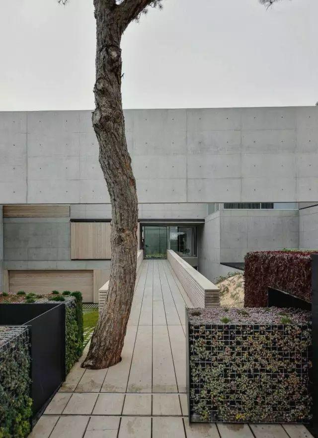 把屋顶设计成空中泳池,只有鬼才,才敢如此设计!_28