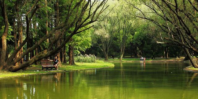 3-上海共青国家森林公园景观设计第3张图片