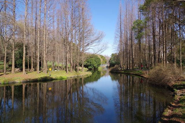 5-上海共青国家森林公园景观设计第5张图片