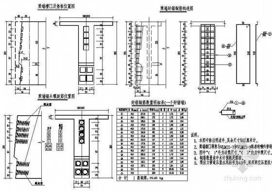 (75+2x120+75)m连续刚构引桥预应力简支T梁钢筋布置节点详图设计