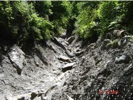 泥石流应急勘查设计书(含图纸)