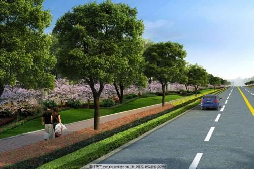 市政道路雨污水工程质量评估报告(9页)