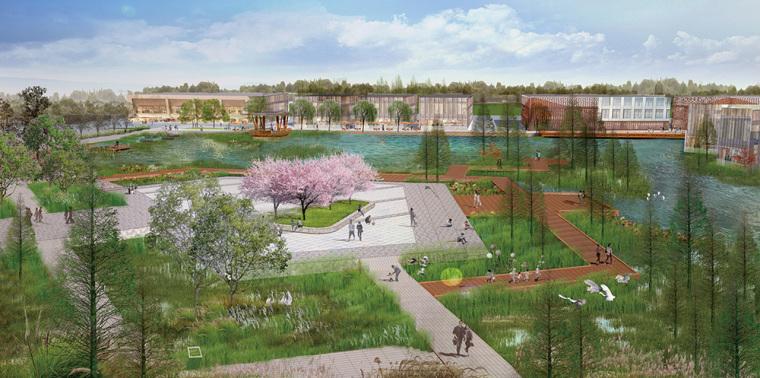 鄂州梧桐湖新区大堤湖滨湿地公园