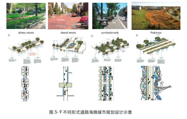 """[四川]""""海绵城市""""城乡规划专项设计详细解读文本(附规划图则+植物名录)-不同形式道路海绵城市规划设计示意"""