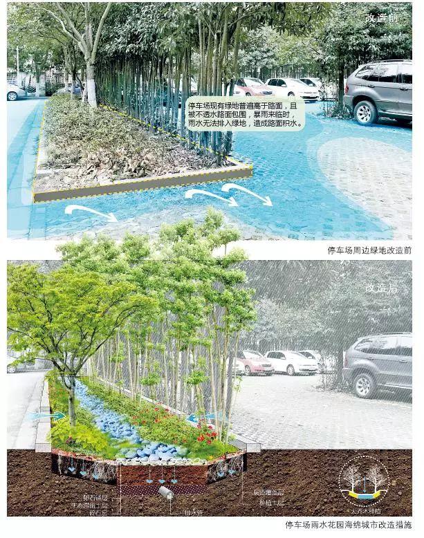 24种海绵城市设计措施全图解!_4