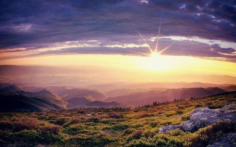 送您一股清新的田园风。_17