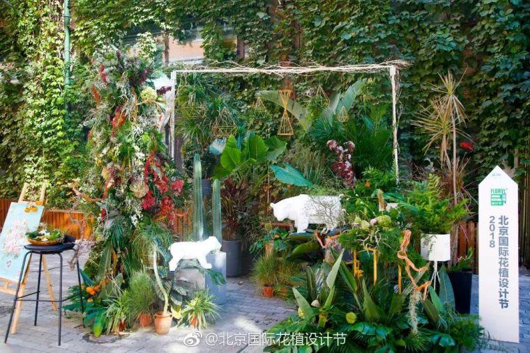 百看不厌、令人痴迷的花园展_94