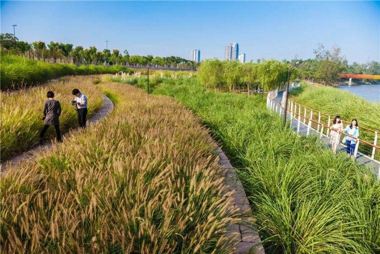 中国建筑设计奖公布,八大景观项目获得中国建筑界最高荣誉!_24