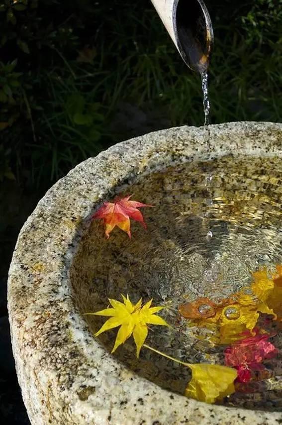 院子里弄上一汪池水,醉美!