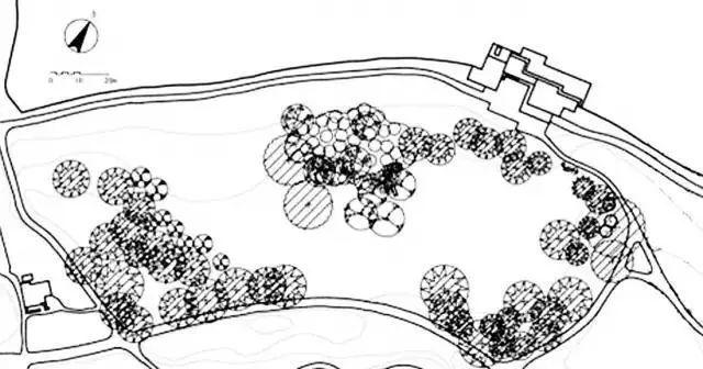 """这些必备的""""植物造景"""",不止是种树种花_30"""