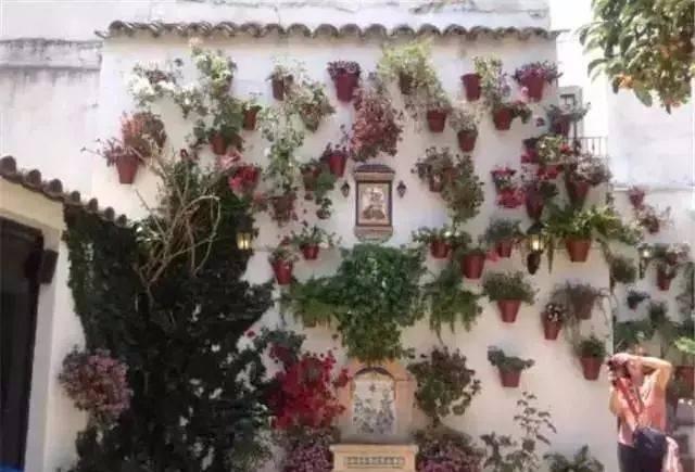 做自己庭院的设计师,造园或许没有想象的那么难!_35