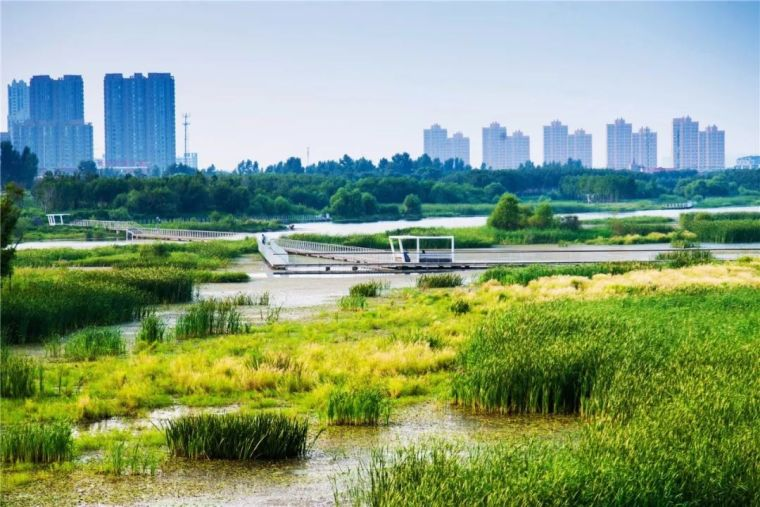 未来城市滨水空间设计有怎样的策略与途径?国际大咖为你解析!_14