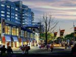 [合肥]儿童购物广场项目定位招商报告
