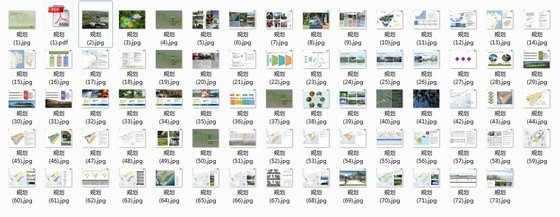 [海南]原生态度假村落小镇规划设计方案(图纸精美)-总缩略图