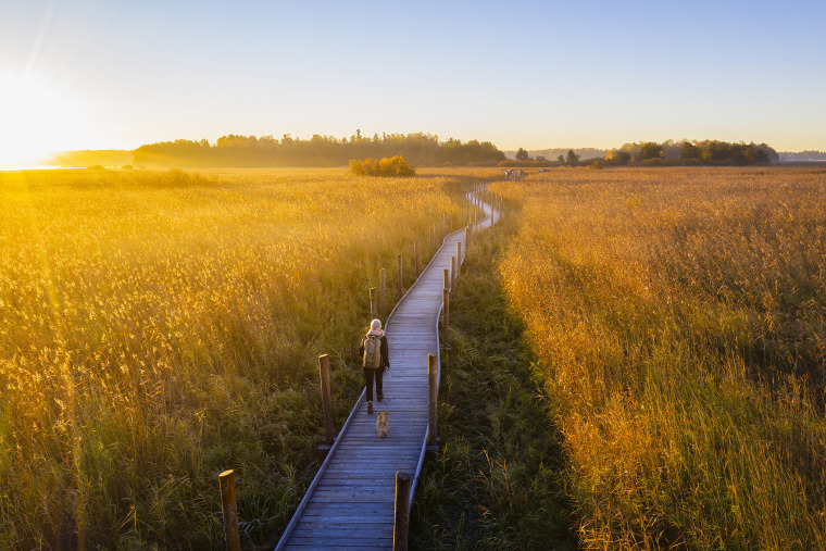 003-nattours-accessible-recreational-path-by-studio-puisto-architects