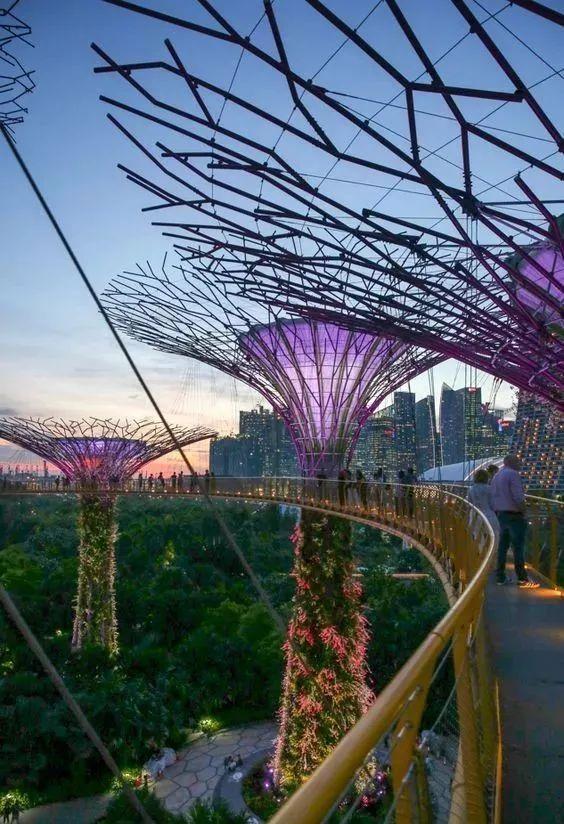 新加坡经典高端景观考察活动_87
