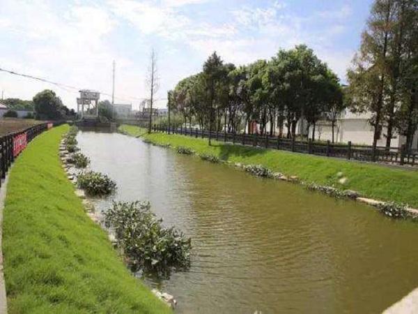 河道综合治理施工方案