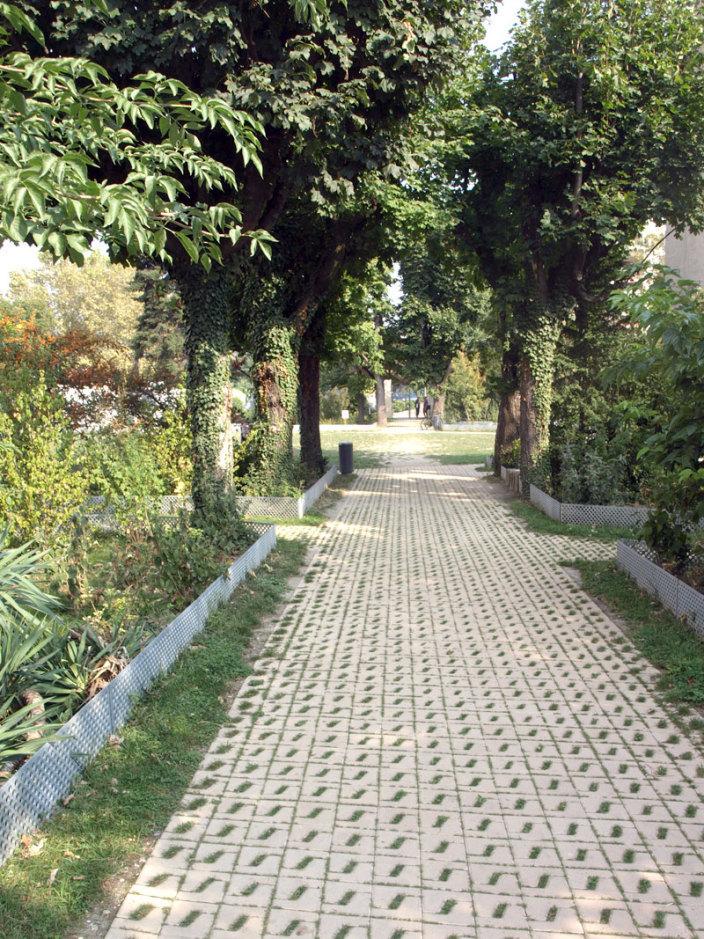 住宅区中的私人花园景观实景图 (10)