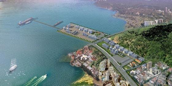 福建5万吨石油石化码头可行性研究报告