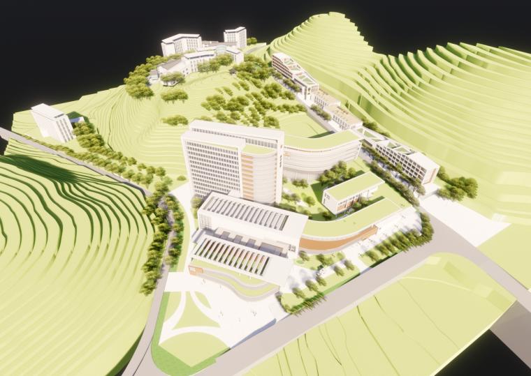 现代风格县中医院+酒店商业街模型设计(2018年)