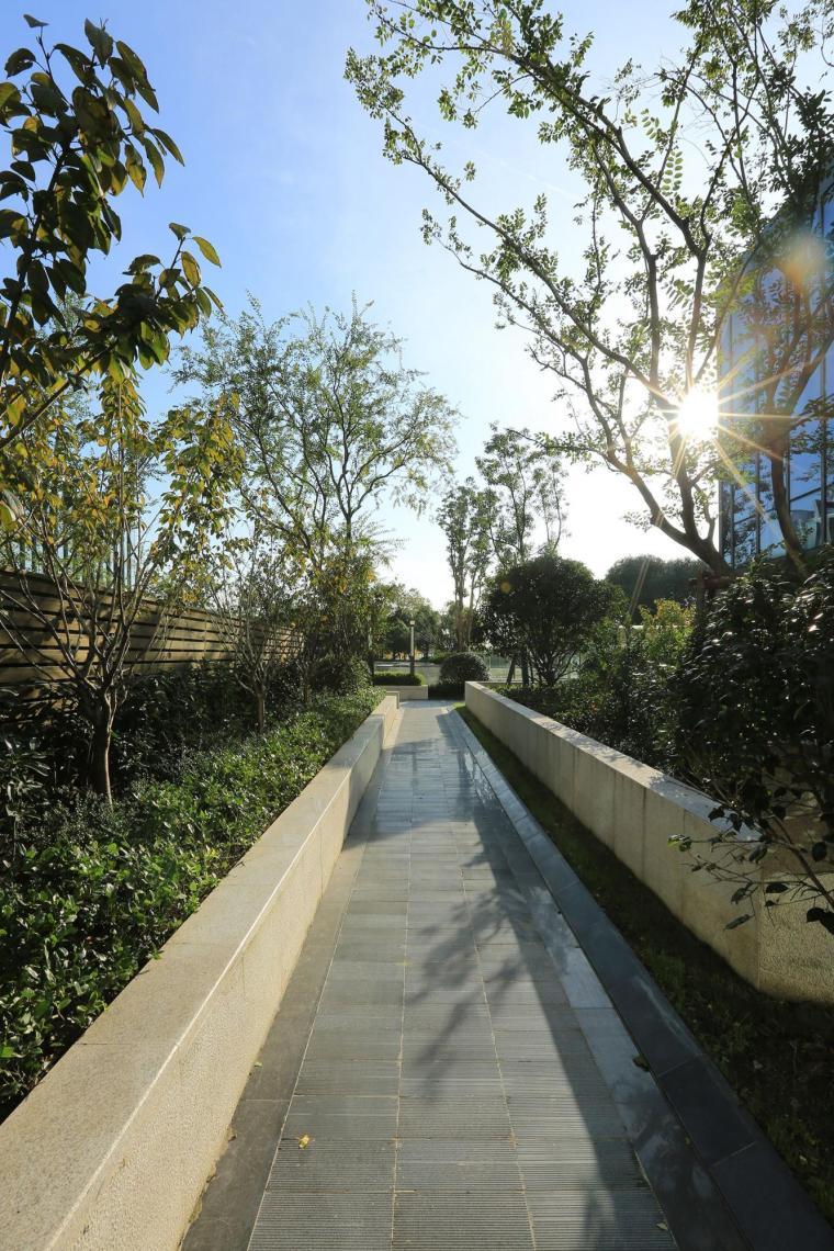 上海保利ONE56住宅景观-6
