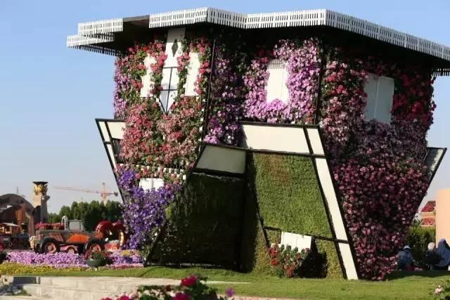 迪拜的花卉展览,全世界规模最大!你肯定没看过!_18