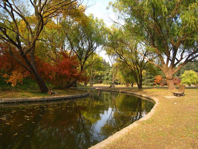 11-上海共青国家森林公园景观设计第11张图片