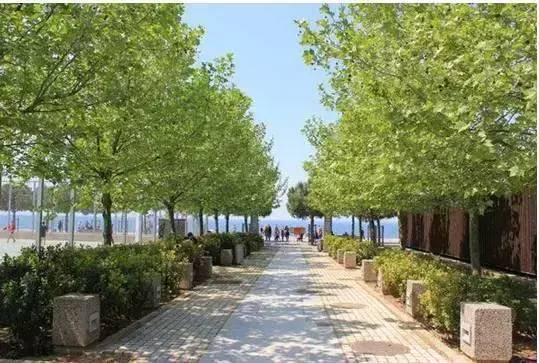 城市绿道系统植物景观设计策略|实用