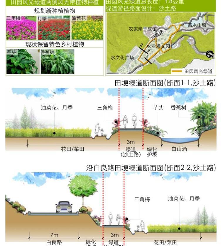 [广东]美丽乡村示范点某镇村庄详细规划景观方案设计PDF(313页)-田园风光绿道