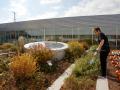 美国Gary Comer青年活动中心绿色屋顶的改造