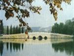 桥梁的设计和规划原则(PPT总结)