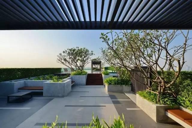 干货——屋顶花园设计规范