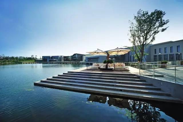城市滨水设计与植物造景_8