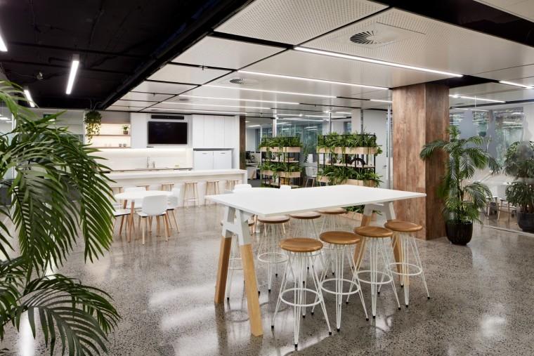 悉尼VisualRisk绿意弥漫的办公空间