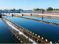 余家头水厂四期DN1500顶管施工方案(40页)