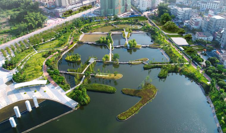 老河道湿地文化公园