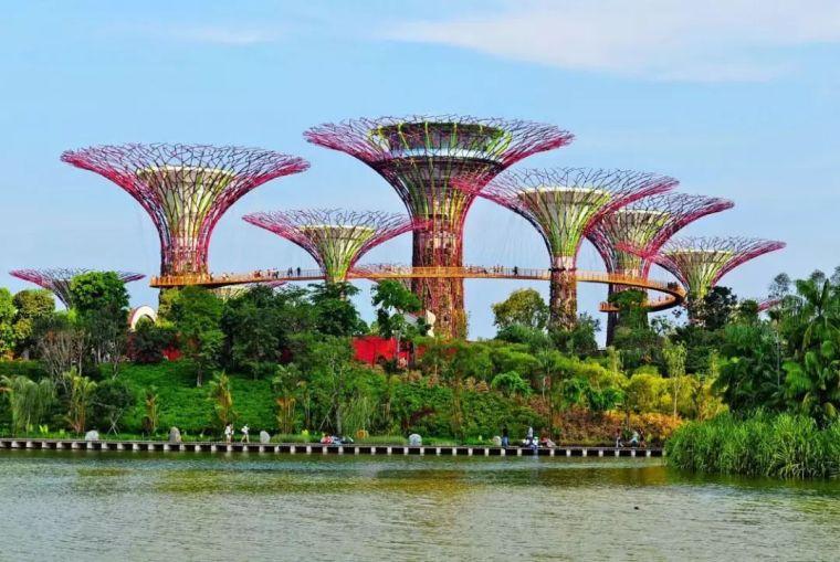 新加坡经典高端景观考察活动_86