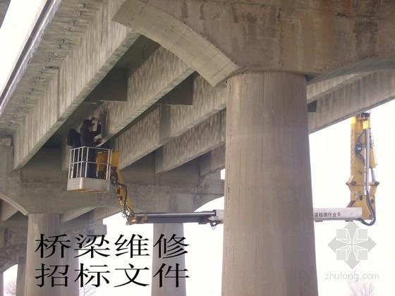 [江西]桥梁维修工程招标文件表格(2010)