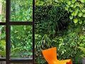 垂直绿化 · 会呼吸的墙壁
