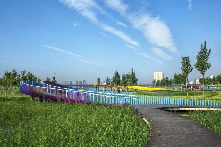案例 渭柳湿地公园_24