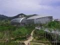 世博园植物馆夹板点式玻璃幕墙施工图
